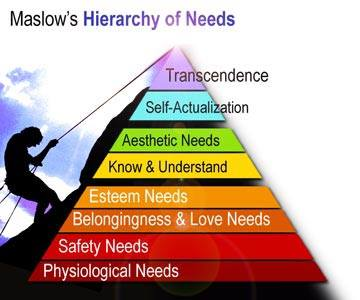 1971 Hierarchy (Graphic from isanjay.in)