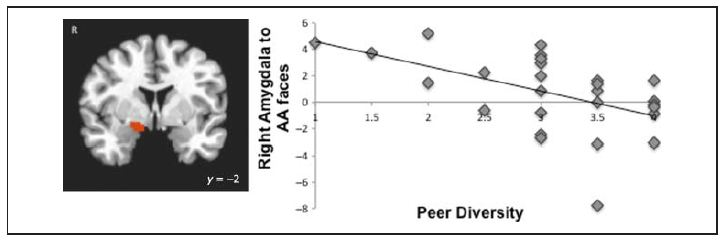 One of the graphs from the Telzer et al study - copyright © 2012 Massachusetts Institute of Technology