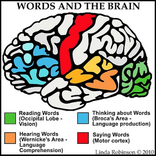 Words-Brain[1]