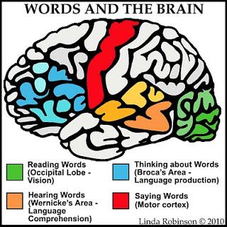 Words-Brain[1]