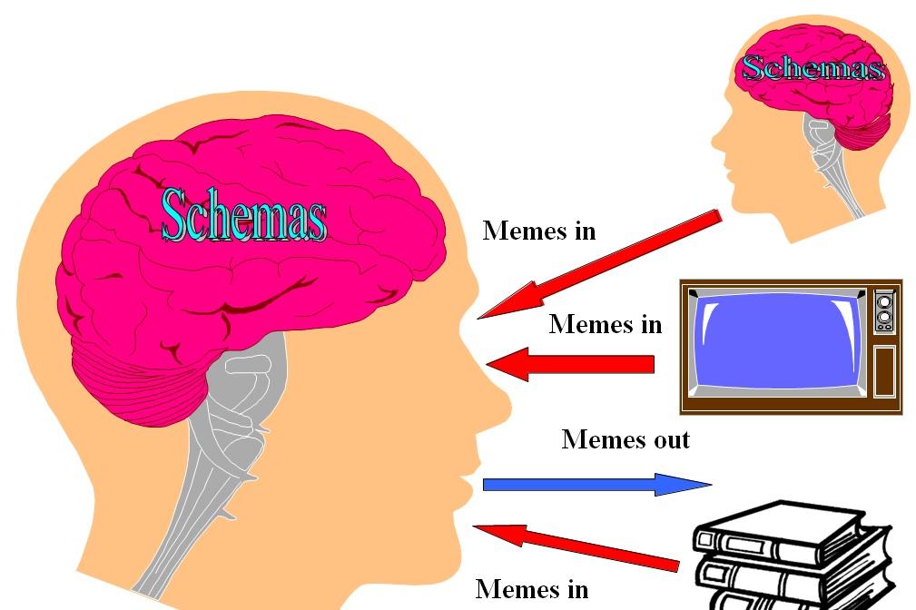 Schemas-Memes