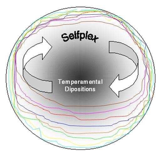 vMEMES-Selfplex-Temperament2