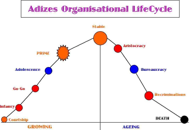 Basic LifeCycle